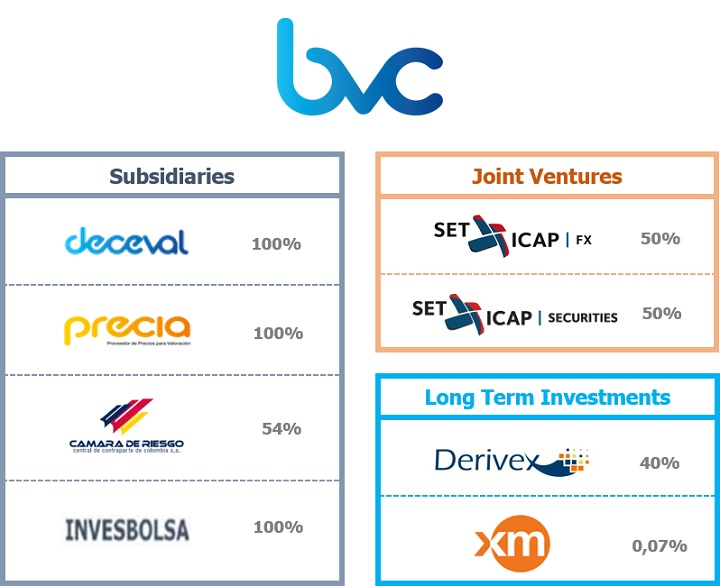 Subsidiaries and Long Term Investment